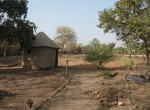 Large Fenced Plot for Sale in Sanyang in The Gambia