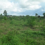 Land for Sale Brufut Madiana Brufut