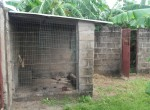 3 bed bungalow for sale in Wullinkama b