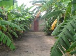 3 bed bungalow for sale in Wullinkama c