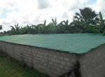 3 bed bungalow for sale in Wullinkama h