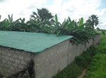 3 bed bungalow for sale in Wullinkama i