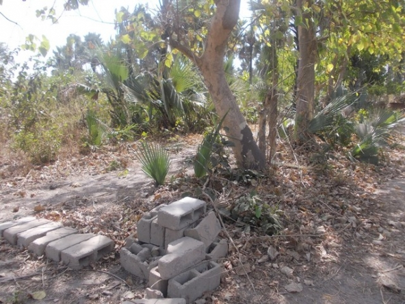 Plot of Land for Sale Gunjur Gambia