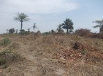 plot of land for sale sanyang