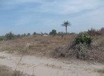 plot of land for sale sanyang c