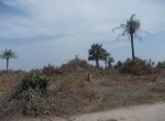 plot of land for sale sanyang d