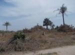 plot of land for sale sanyang f