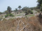 plots of land for sale in sanyang b