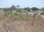 plots of land for sale in sanyang c