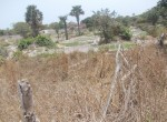 plots of land for sale in sanyang g