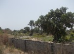 plots of land for sale in sanyang m