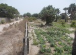 plots of land for sale in sanyang o