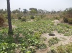 plots of land for sale in sanyang p