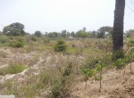 plots of land for sale in sanyang r