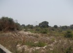 plots of land for sale in sanyang s
