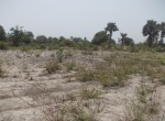 plots of land for sale in sanyang w