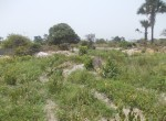 plots of land for sale in sanyang y