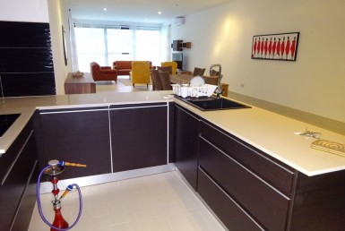 luxurious waterfront apartment for rent